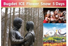 Bugdet iCE Flower Snow 0
