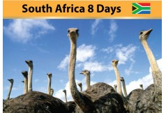 South Africa 8 Days by SQ  0