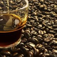 ต้นกำเนิดกาแฟ