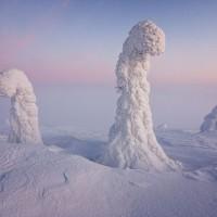 ต้นไม้น้ำแข็ง-มหัศจรรย์ธรรมชาติสรรสร้างแห่งอาร์กติก