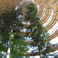 สุดยอดทางเดินชมวิวดีไซน์โมเดิร์นที่อุทยานป่าบาวาเรียน